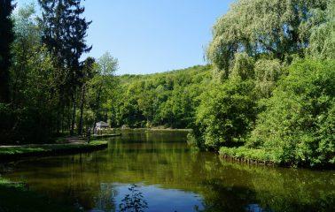 Ottignies_2015-5_Bois des Rêves_FTBW